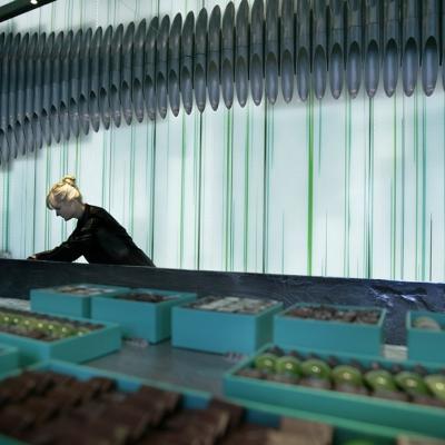 Vitrophanie avec blanc de soutien pour le Chocolatier Patrick Roger